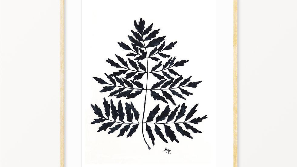 Fern Silhouette 2- Watercolor Print
