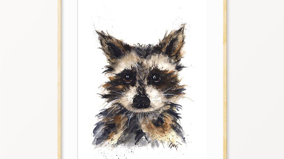 Raccoon- Watercolor Print