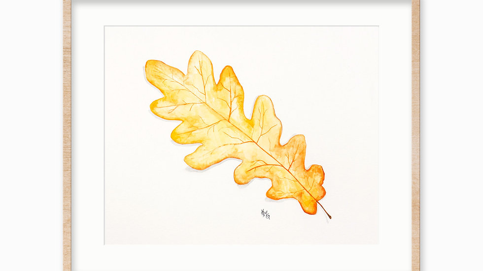 Oak Leaf- Watercolor Print