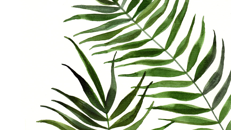 Palm Fronds 2- Watercolor Print