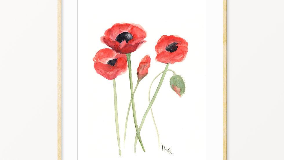 Poppy Flowers- Watercolor Print