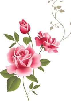 rose-flower-vetor-53_f.jpg
