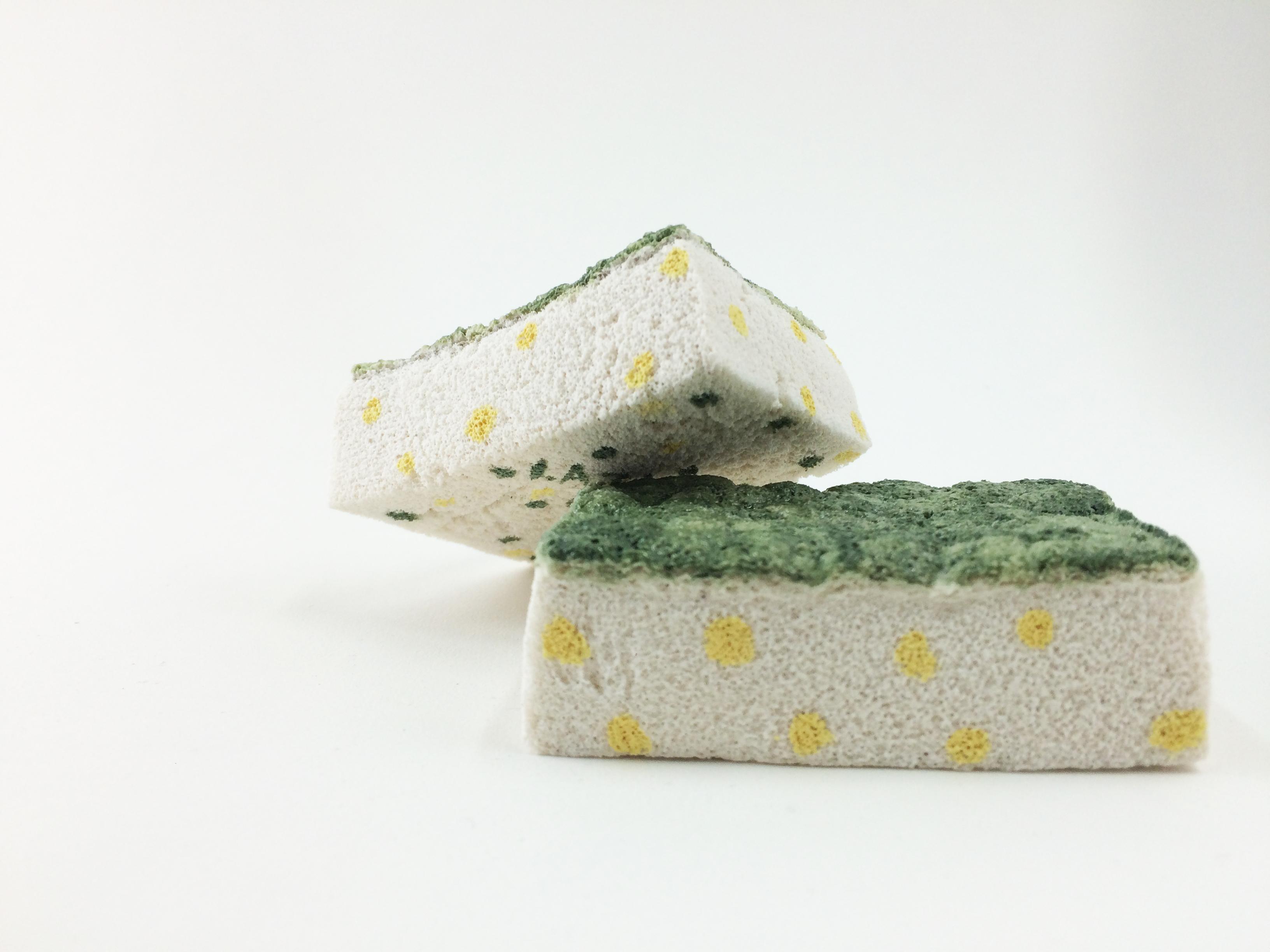 Susan- Sponges