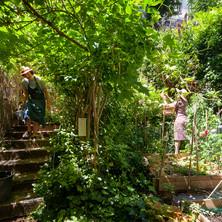 Vue générale du jardin du Sacré-Cœur Studio