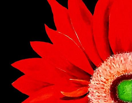 cq petals.jpg