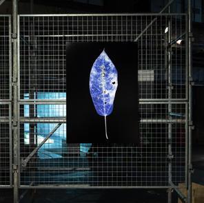 ARTISTS' FAIR KYOTO