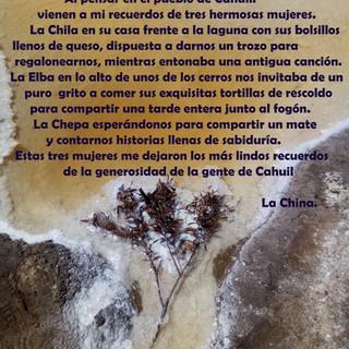 100 palabras para Cahuil