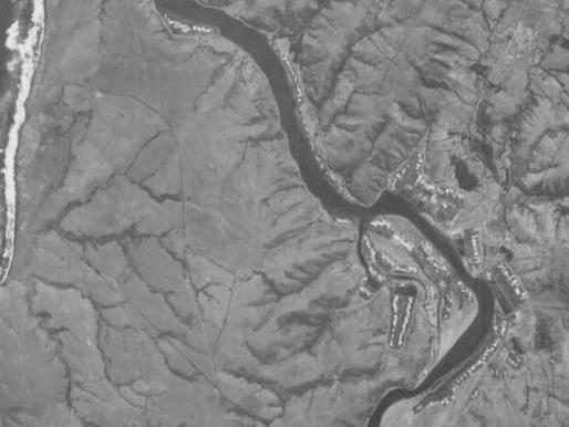 Culebra de Sal, crece con el agua del mar