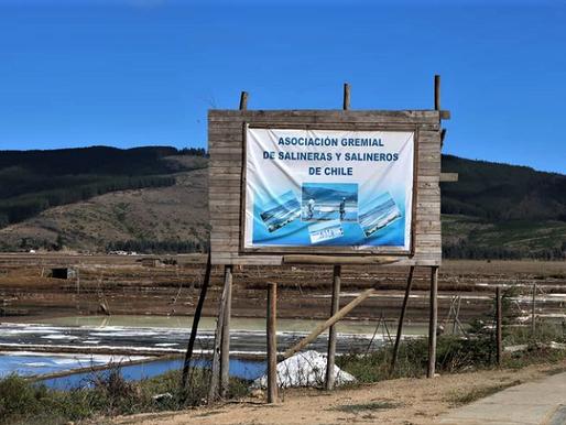 Asociación Gremial de Salineras y Salineros de Chile