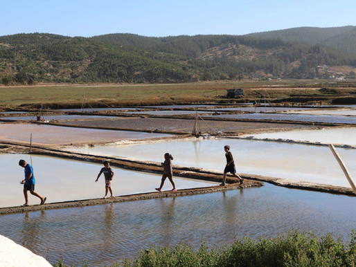 Regeneración ecológica de Salinas como Centros Educativos Interculturales en Cahuil y Boyeruca .