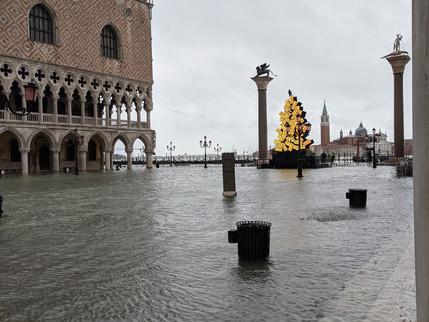 今日のヴェネチア・アクアアルタの写真