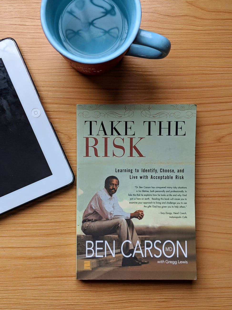 take the risk book