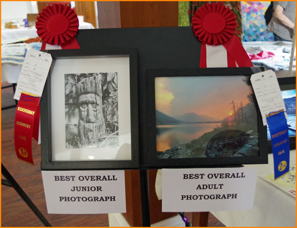 L & M Photography Best Overall