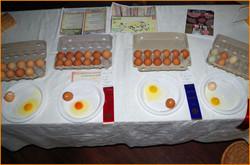F Preserves & Eggs