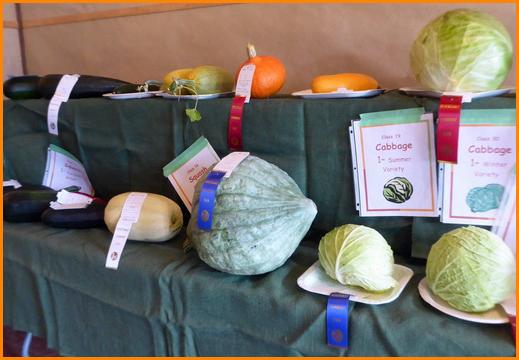 A Garden Produce - Sally P. Photo