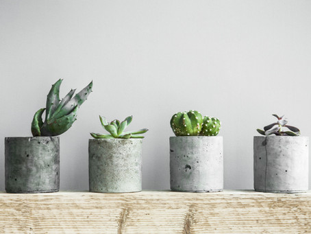 My pick on planters