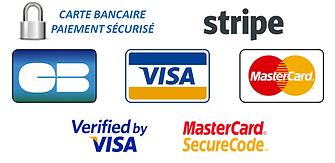 logo-payline-paiement-securise_copie_large.png
