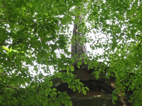 ruine in Bad Herrenalb