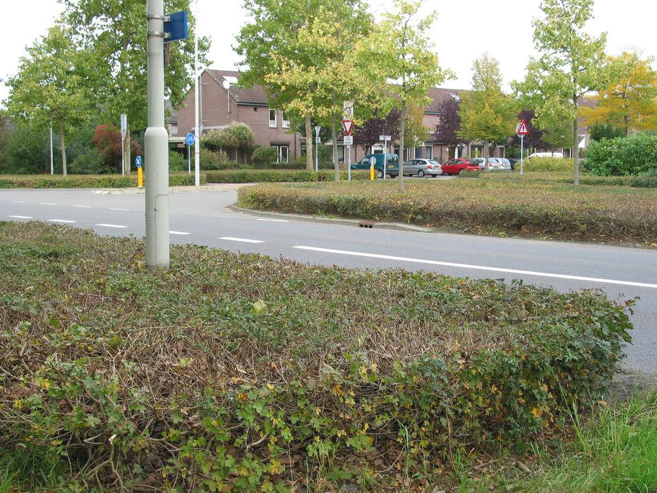 Klooster oktober 2006