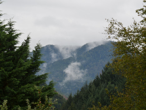 bewolkt in de bergen