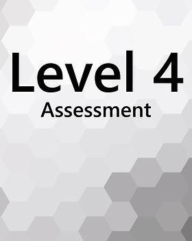 Level4_Navigator.jpg