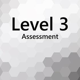 Level3_Navigator.jpg