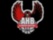 AJ Hawkins Basketball