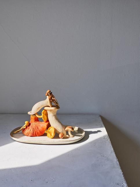 Sculptural Mushrooms. Leigh Beisch, San Franisco.