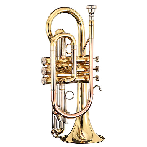 Kaizer 3000 Series Bb Cornet - Rose Brass