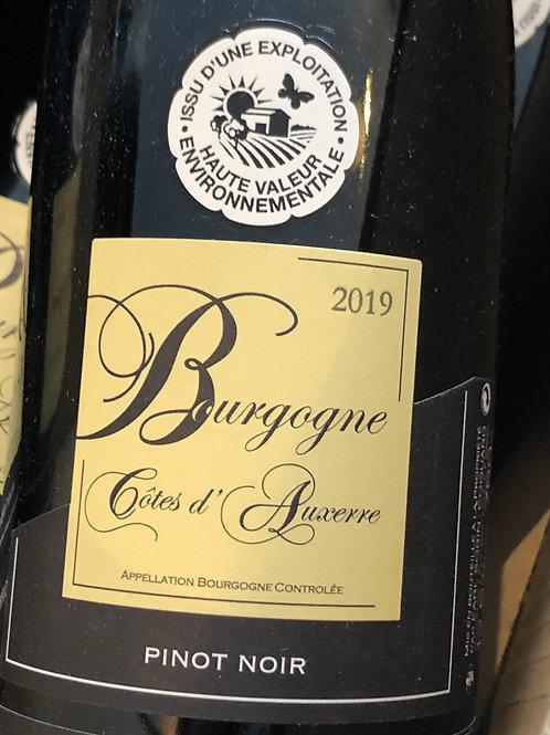Pinot noir Sorin Coquard Côtes d'Auxerre