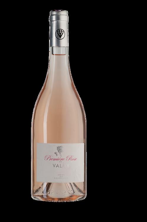 Première Rose de Valmy