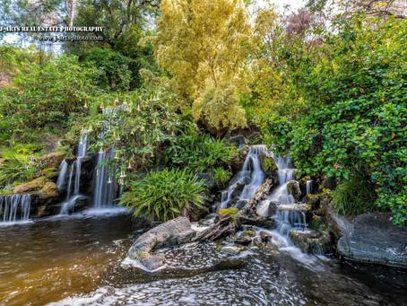 Neighborhood Shoot : Arboretum & Botanic Garden