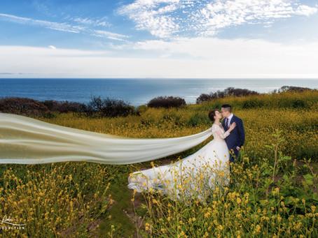 Pre wedding session: Malibu Beach