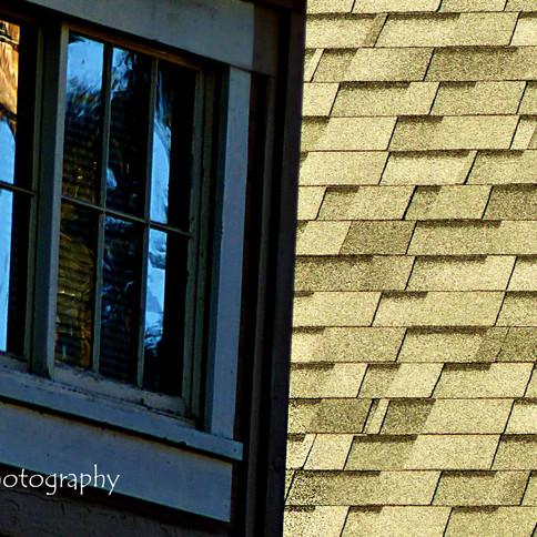 Shingles and Windows