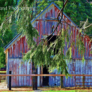 Mt. Shasta Barn