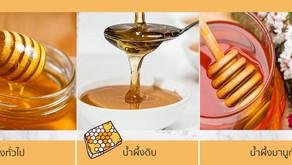 น้ำผึ้งทั่วไป น้ำผึ้งดิบและน้ำผึ้งมานูก้า แตกต่างกันอย่างไร