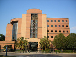 Shands Brain Institute