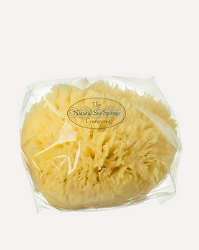 THE NATURAL SPONGE COMPANY.png