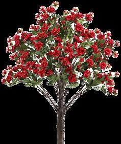 5' Tall Flower Rose Tree