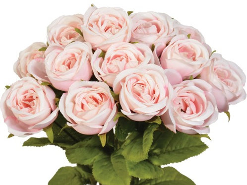 Premium Mini Cabbage Roses - Available in 5 Colors!