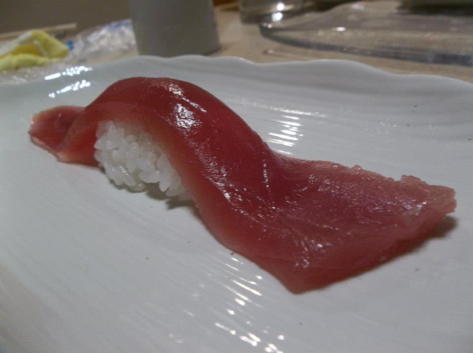 tuna - 9 inches long