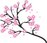 blossoms-2026207_960_720.png