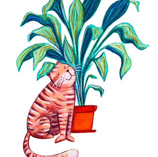 Cat and Plant 2