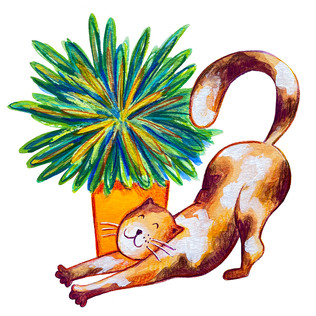 Cat and Plant 3