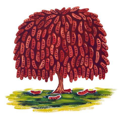 Hot Dog Tree