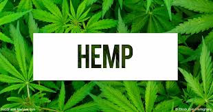 Hemp on its way to Full Legalization