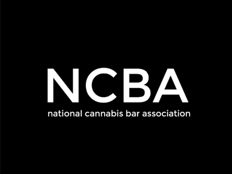 Catia Kossovsky Elected to Board of Directors of NCBA