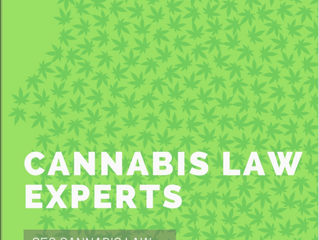 Catia Kossovsky recognized as Cannabis Law Expert