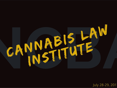 Catia Kossovsky speaks on panel at Cannabis Law Institute in Denver