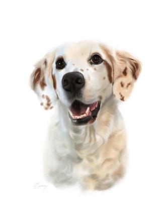 realistic style pet portrait